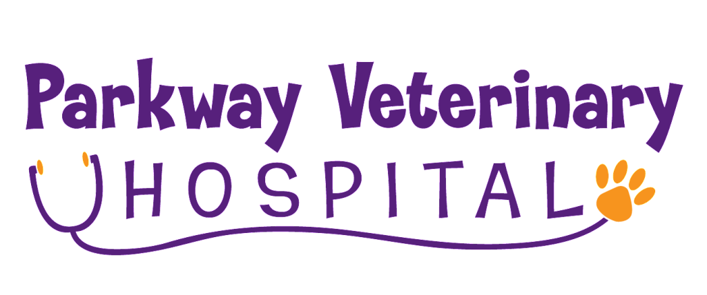 Veterinary Logo by Creations 4 You